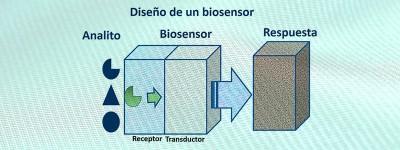 3 bioconjugacion